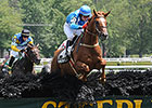 Champion Divine Fortune Dies After Fall