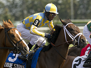 Dixie Strike Takes Rail Trip to Win Selene