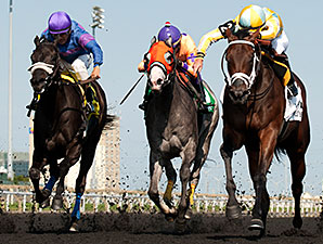 Dixie Twist wins the 2014 Ontario Debutante Stakes.