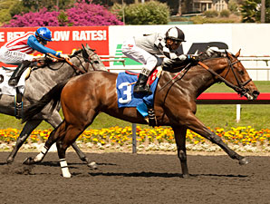 Doinghardtimeagain wins the Melair Stakes.