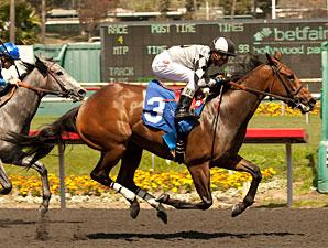 Doinghardtimeagain wins the Melair Stakes.