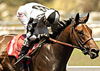 Doinghardtimeagain Cracks Hollywood Oaks