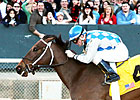 Donoharm One to Beat in Texas Mile