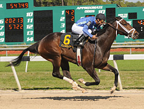 Don't Forget Gil wins the 2009 Florida Oaks