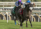 Don't Leave Me Back to Best in Colleen