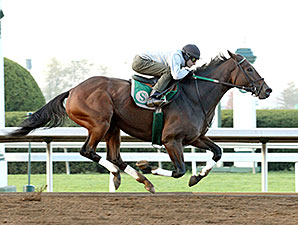 Don't Tell Sophia at Keeneland, 10/24/2014