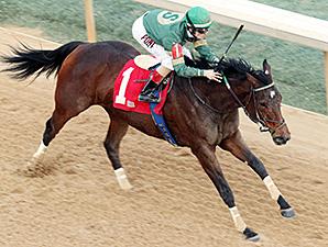 Don't Tell Sophia wins the Bayakoa Stakes.