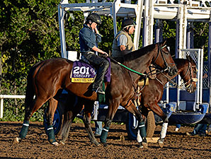 Don't Tell Sophia - Breeders' Cup, October 28, 2014