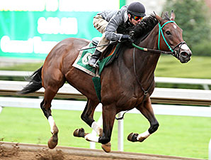 Don't Tell Sophia, Keeneland Work, October 18, 2014.