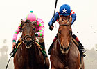 Firing Line Playing Favorite in Sunland Derby