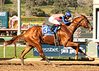 Dortmund Cruises Wire-to-Wire in San Felipe