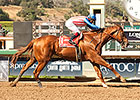 Dortmund Unrelenting in Santa Anita Derby