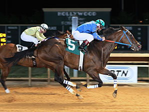 Down Town Allen wins the 2013 Fancy Buckles Stakes.