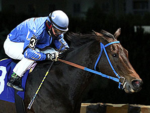 Down Town Allen wins the 2014 My Sister Pearl Stakes.