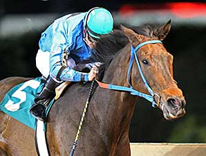 Down Town Allen wins the 2014 Original Gold Stakes.