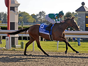 Dream Empress Powers to Alcibiades Win