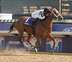 Dreaming of Anna Comes True in Juvenile Fillies