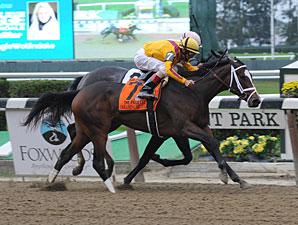 Dreaming of Julia wins the 2012 Frizette.