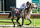 Sophomore Grass Races Top Arlington Card