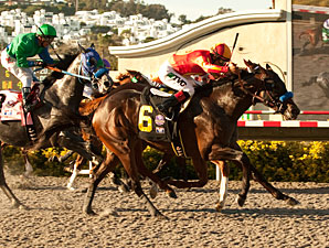 Drill wins the 2011 Del Mar Futurity.