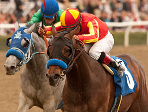 Drill in the San Vicente Stakes.