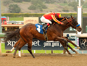 Drill Digs Deep in San Vicente Stakes Duel
