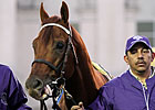 Drosselmeyer Could Race Again
