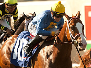 Dry Summer Tops Field in Mine That Bird Derby