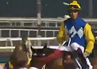 Dubai Al Quoz Sprint - Mike de Kock