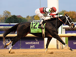 Widely Traveled Dubai Majesty Wins Eclipse