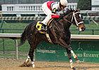 Dubai Majesty Tops Winning Colors Field