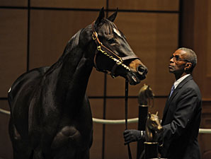 Dubai Majesty Brings $1.1 Million at F-T