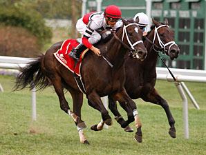 Dubai Majesty wins the 2010 Incredible Revenge.