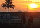 Dubai World Cup: Training 03/29/2013