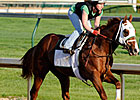 Dublin Works Five Furlongs at Muddy Churchill