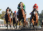 Maiden Dullahan Shocks Breeders&#39; Futurity