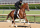 Dullahan Will Skip Preakness; Belmont Next