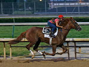 Dullahan - Churchill Downs, May 26, 2012.