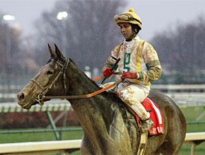 Dundalk Dust wins the 2010 Falls City Handicap.