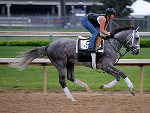 Dunkirk works at Churchill Downs on April 30, 2009.
