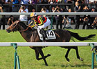 Duramente Takes Japanese Derby in Record Time