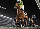Hong Kong&#39;s Dynamic Blitz Upsets Al Shindagha