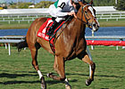 Dynamic Holiday Seeks Dynamic VA Oaks Run