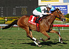 Dynamic Holiday Wins 4th Straight in &#39;Bride