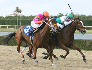Dynamic Holiday wins the 2011 Tropical Park Oaks.