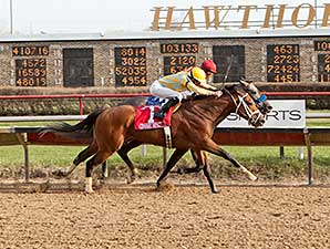 Dynamic Impact wins the 2014 Illinois Derby.