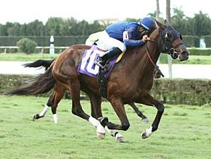 E B Ryder wins the 2013 Frances A. Genter Stakes.