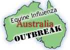 Australian EI Update: More Than 150 Horses Reported Sick