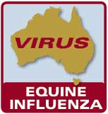 Racing Officially Halted in Australia Because of Equine Influenza
