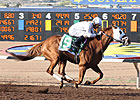 $800,000 Sunland Derby Tops New Mexico Meet